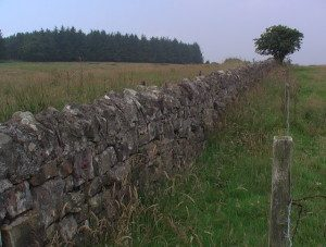 wall_running_along_the_line_of_the_parish_boundary_-_geograph-org_-uk_-_897372-300x227